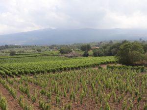 Al-Cantara and Etna
